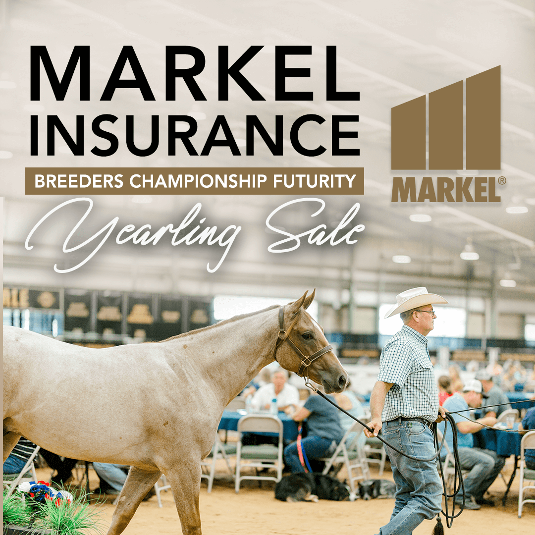 Horse with Champion neck ribbon, and Markel Insurance Yearling Sale banner above it.
