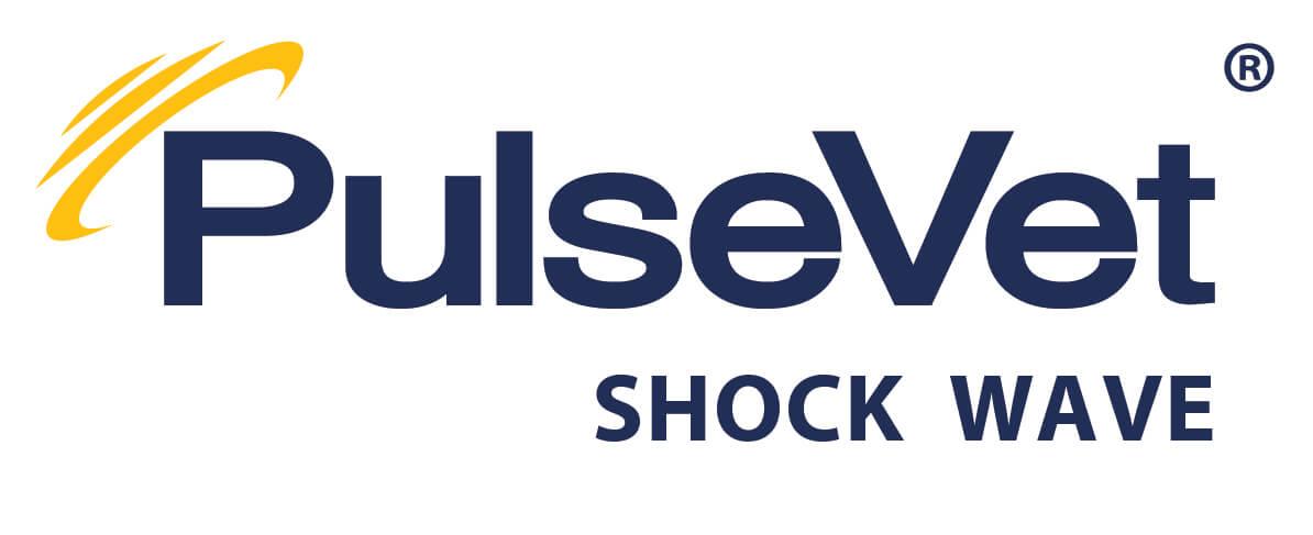 pulsevet_shockwave.jpg